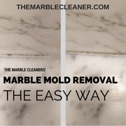 MARBLE MOLD REMOVAL